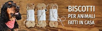 Biscotti per animali fatti in casa