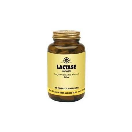 solgar lactase