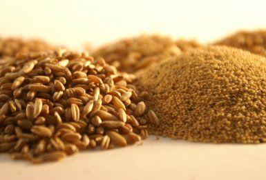 Un mondo senza glutine: la guida alle alternative gluten free!