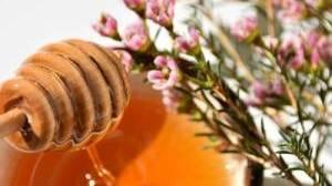 Proprietà e benefici del miele di Manuka