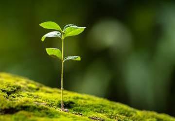 Proteggiamo il nostro ambiente