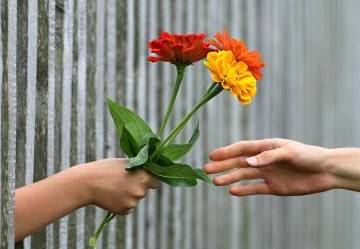 L'arte della gentilezza