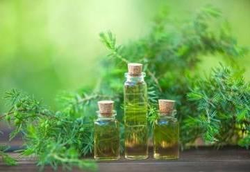 Tea Tree Oil: cosa è e quando si usa